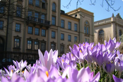 Spring in Munich