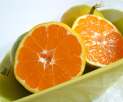 Tangerine-Pomelo-Cross