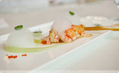 Ikarus: scampi - 3 x cucumber - white balsamic vinegar - cress