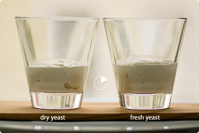 comparing yeast - after 10 minutes