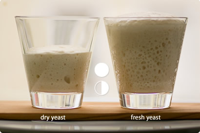 comparing yeast - after one and a half hour